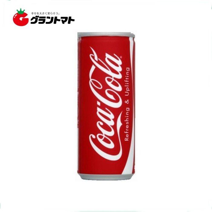 코카콜라 캔 250ml 1캔