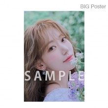 【예약 종료】 미야 와키 사쿠라 졸업 콘서트 ~Bouquet~ B2 포스터 H (소책자 아자 컷) BIG Poster