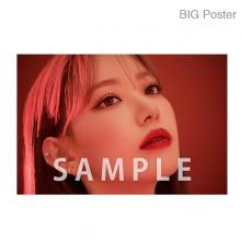 【예약 종료】 미야 와키 사쿠라 졸업 콘서트 ~Bouquet~ B2 포스터 G (소책자 아자 컷) BIG Poster