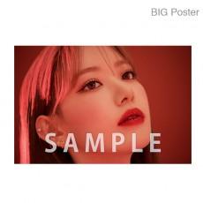 【예약 상품】 미야 와키 사쿠라 졸업 콘서트 ~Bouquet~ B2 포스터 G (소책자 아자 컷) BIG Poster