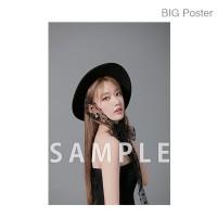 【예약 종료】 미야 와키 사쿠라 졸업 콘서트 ~Bouquet~ B2 포스터 F (소책자 아자 컷) BIG Poster