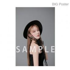 【예약 상품】 미야 와키 사쿠라 졸업 콘서트 ~Bouquet~ B2 포스터 F (소책자 아자 컷) BIG Poster