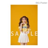 【예약 종료】 미야 와키 사쿠라 졸업 콘서트 ~Bouquet~ B2 포스터 D (소책자 아자 컷) BIG Poster