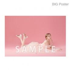 【예약 상품】 미야 와키 사쿠라 졸업 콘서트 ~Bouquet~ B2 포스터 C (소책자 아자 컷) BIG Poster