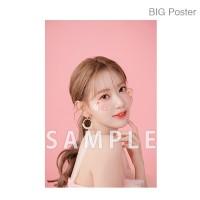 【예약 종료】 미야 와키 사쿠라 졸업 콘서트 ~Bouquet~ B2 포스터 A (소책자 아자 컷) BIG Poster