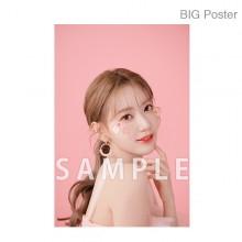 【예약 상품】 미야 와키 사쿠라 졸업 콘서트 ~Bouquet~ B2 포스터 A (소책자 아자 컷) BIG Poster